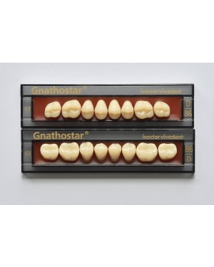 1 x 8 Gnathostar - Lower Posterior - Mould D80, Shade A2