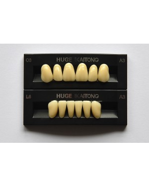 1 x 6 Kaitong - Upper Anterior - Mould SS1, Shade C2