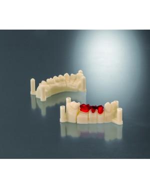 DETAX 3D Printer Resins FREEPRINT 385    MODEL IVORY  1 Kg