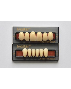1 x 6 Ivostar - Upper Anterior - Mould 41, Shade A4