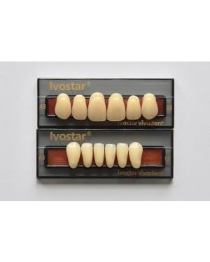 1 x 6 Ivostar - Upper Anterior - Mould 43, Shade A4