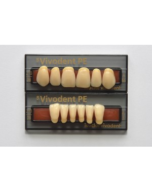 1 X 6 SR Vivodent PE - Lower Anteriors - Mould A8, Shade 4B