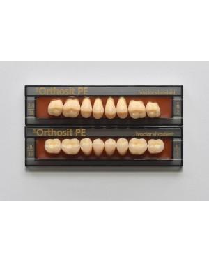 1 x 8 SR Orthosit PE - Upper Posteriors - Mould K2, Shade 01